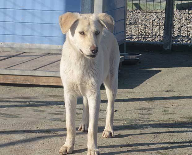 Bild_upload Felina