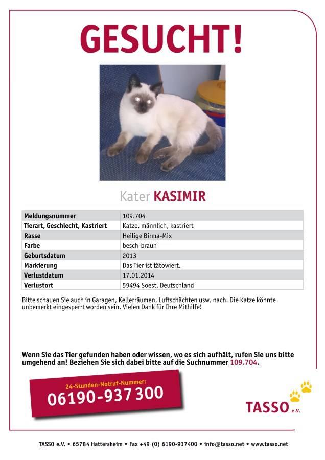 Tiersuchmeldung Siam Mix Kasimir Gesucht In Soest Online Suchanzeige Id 1162 Bei Zergportal
