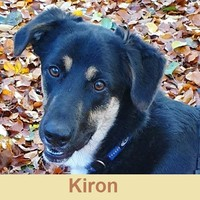 Anzeige Kiron lesen