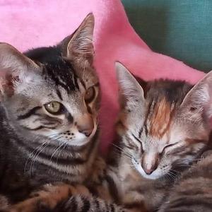 Rita & Roco